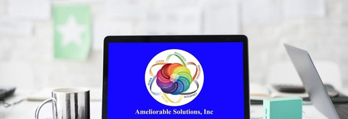 Ameliorable Solutions Inc